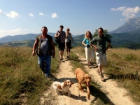 Truffle Hunting and Cooking Breaks in Le Marche